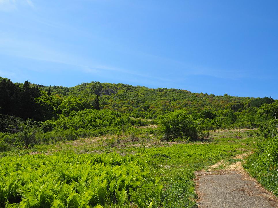 信濃平山景色