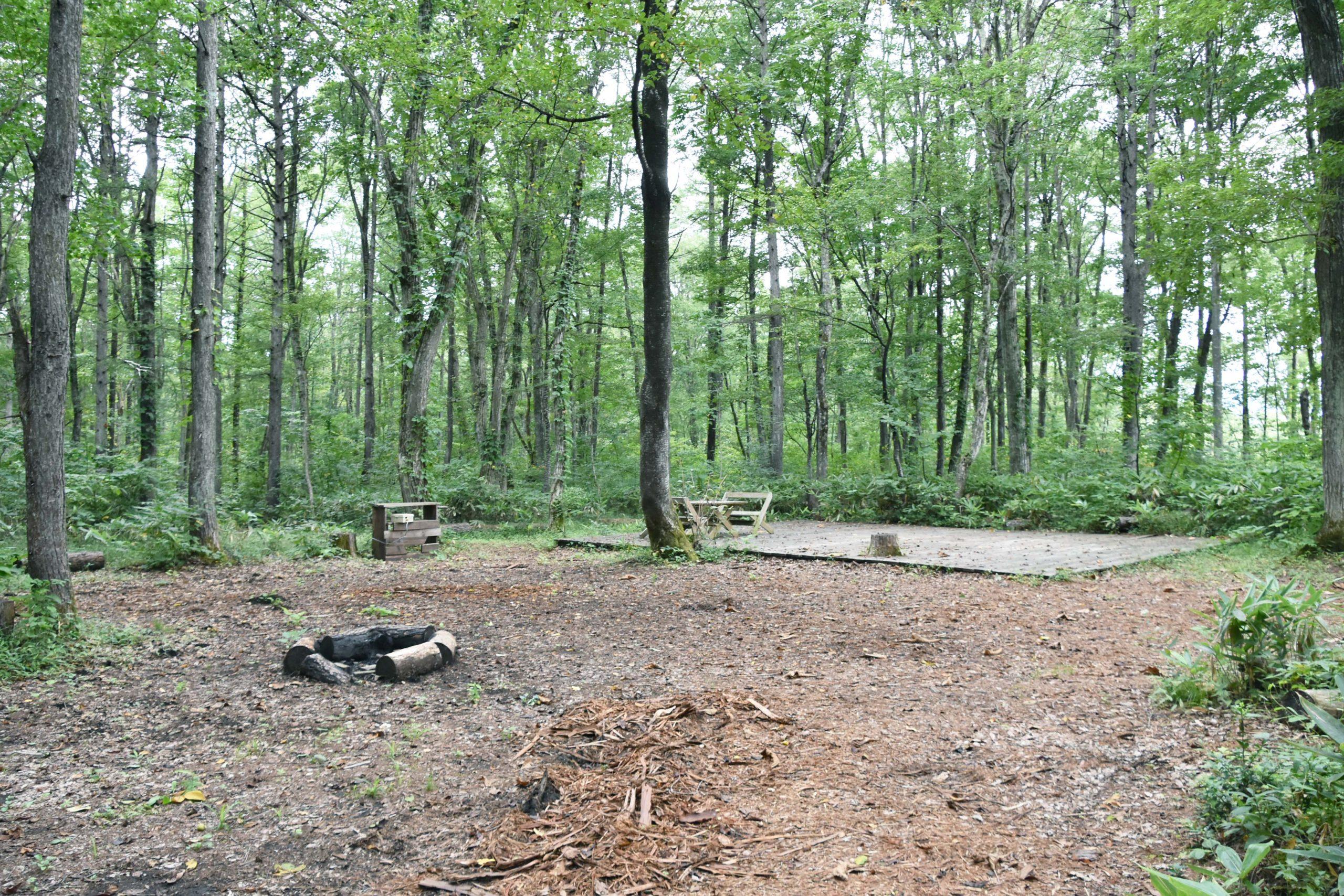 やすらぎの森オートキャンプ場